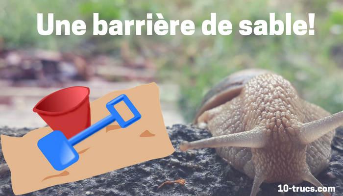 barrière de sable, anti limace naturel