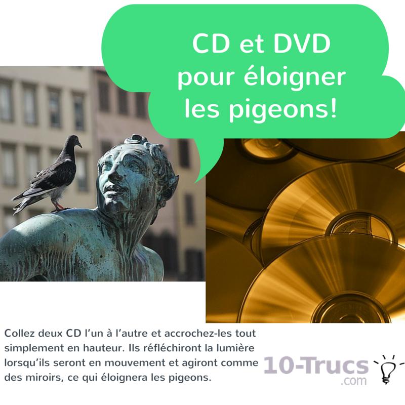cd pour éloigner les pigeons