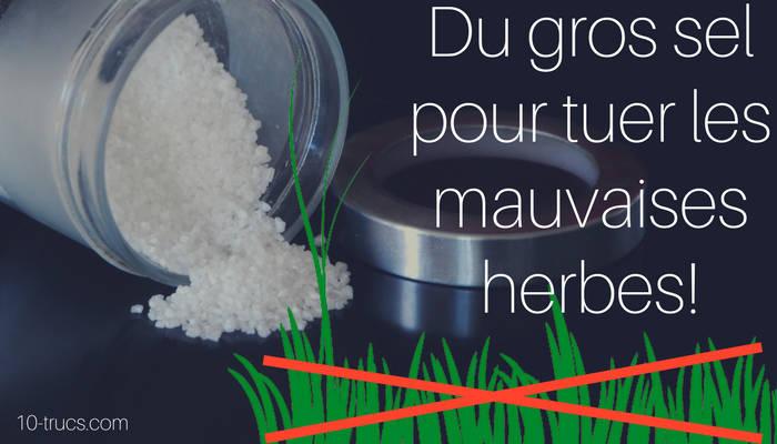 gros sel pour tuer les mauvaises herbes