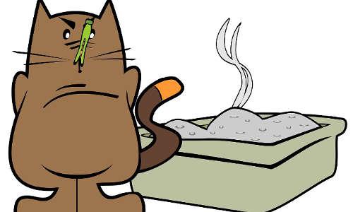 Litière à chat contre les taupes