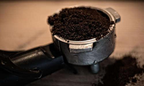 Le marc de café comme remède anti fourmis
