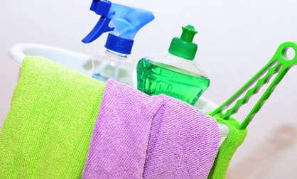 Nettoyage anti puce