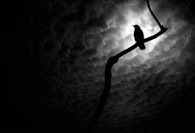 peur du noir, truc contre la peur dans le noir,