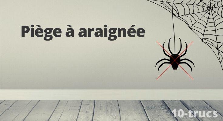 Faire un piège à araignée pour piéger les araignées