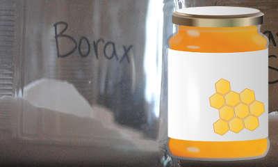 Piège à fourmis avec borax et miel