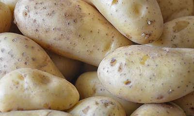 Tranches de pommes de terre pour les yeux gonflés