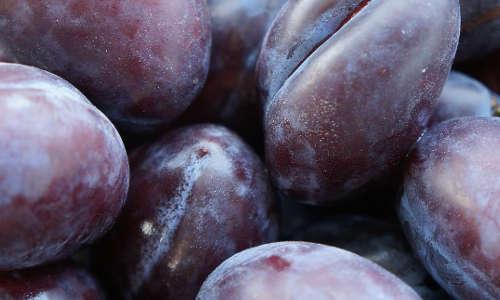 des prunes comme purge intestinale