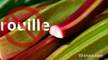 de la rhubarbe pour enlever les taches de rouilles sur des tissus