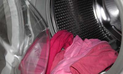 eau chaude pour tuer les punaises de lit