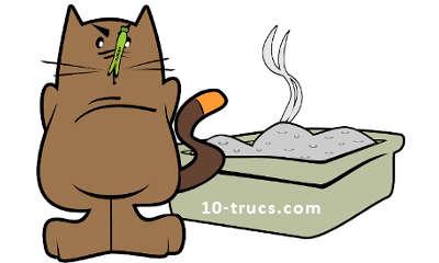 Laver régulièrement la litière à chat