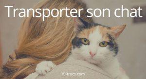 voyager avec un chat et transporter un chat