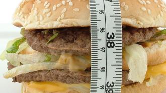 manger moins gras, manger trop gras,