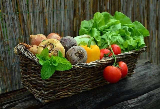 Faire pousser de bons légumes
