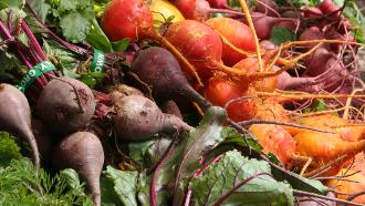 Faire un jardin de légumes