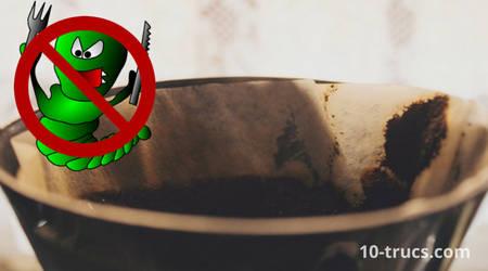 marc de café comme anti chenille