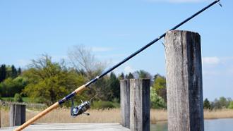 apprendre à pêcher, apprendre la pêche,
