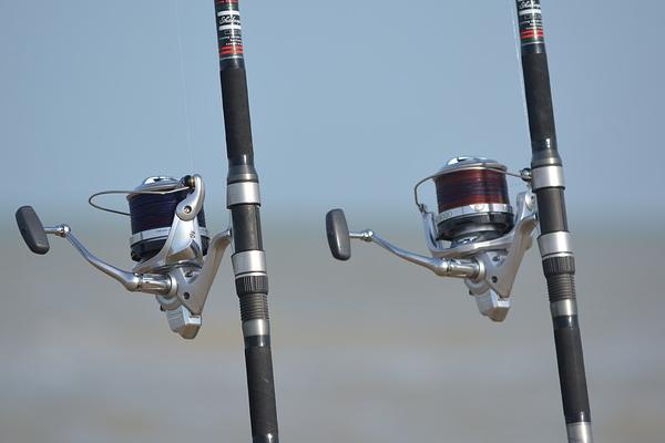 canne à pêche, matériel de pêche, accessoire de pêche,