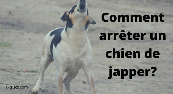 comment arrêter un chien de japper