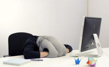 oreiller autruche, oreiller pour la tête,