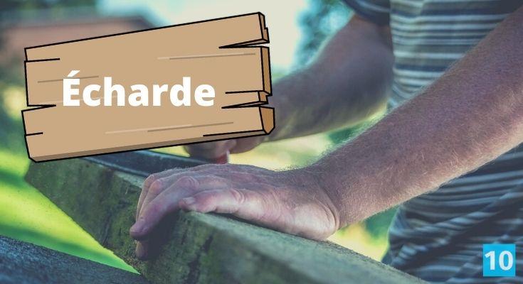 Comment enlever une écharde au pied ou sur le doigt?