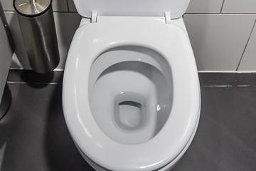 désinfecter toilettes, laver les toilettes,