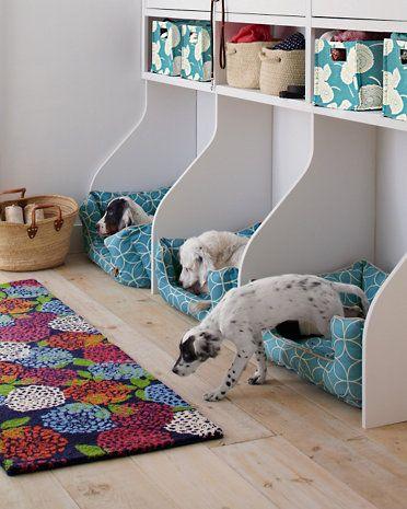 chambre pour chien, chambre à coucher chien,