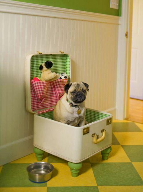 petit espace chien, valise espace chien, petite maison chien,