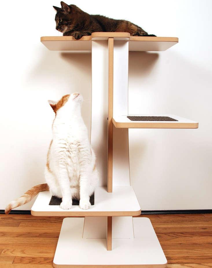 arbres pour chat, module pour chat,