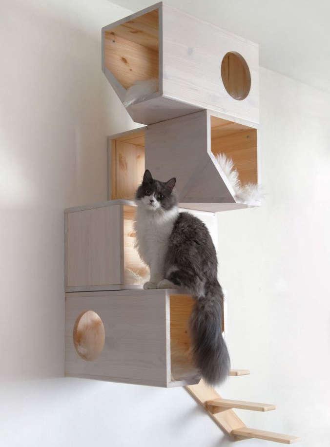 arbre à chat cube de bois, catissa arbre à chat,