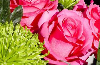 offrir des fleurs, bouquet de fleurs,