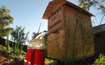 ruche miel automatique, flow hive honey,