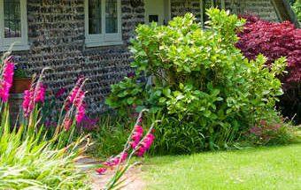 aménager un jardin, décorer un jardin,