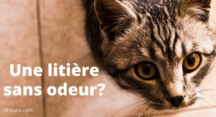 truc odeur litière à chat, astuce mauvaise odeur litière à chat,