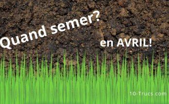 Semer le gazon au mois d'avril ou de main
