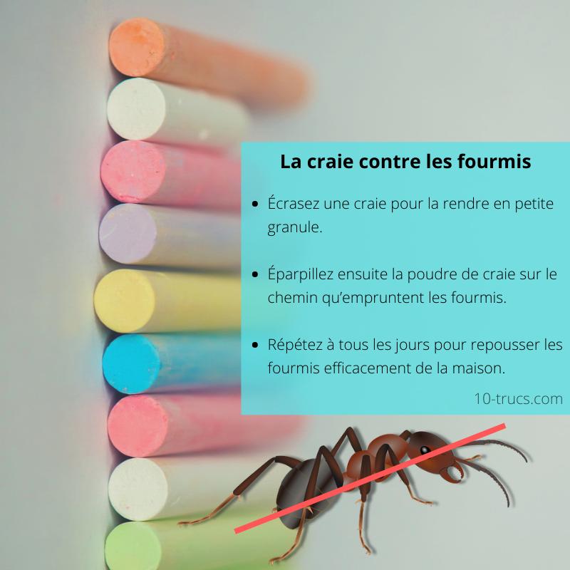 Chemin de craie comme anti fourmis