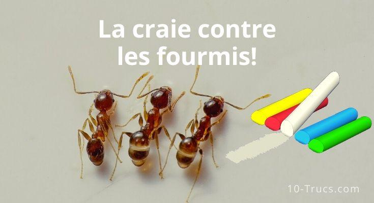 Utiliser un chemin de craie contre les fourmis