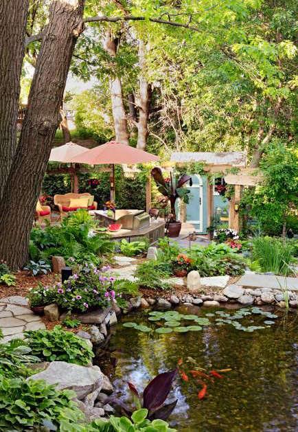 jardin d'eau poisson, bassin avec des poissons,