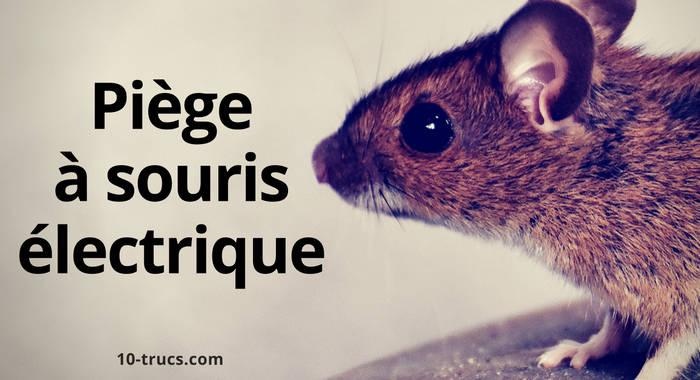 acheter un piège à souris électrique