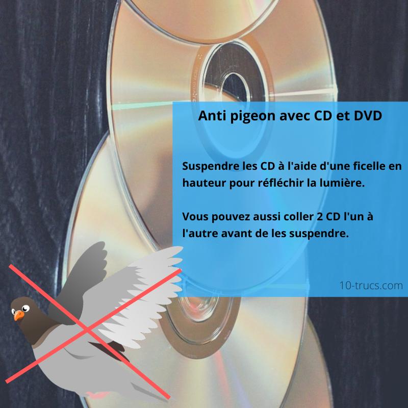 CD pour faire fuir les pigeons