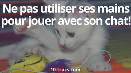 empêcher son chat de griffer avec un jouet pour chat