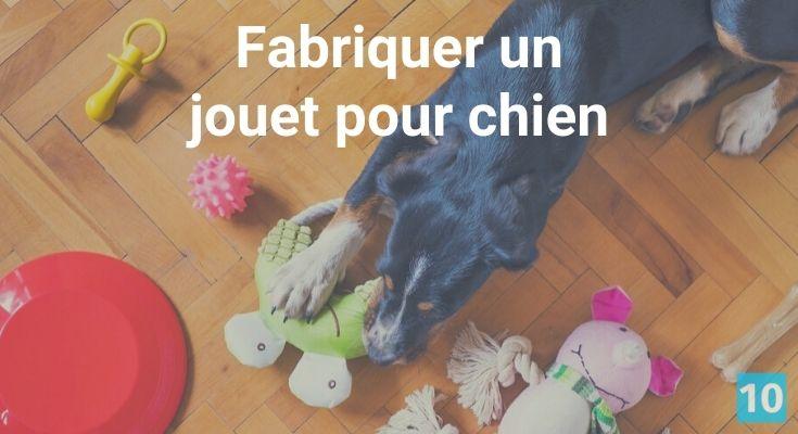 Comment fabriquer un jouet pour chien?
