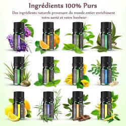 huile essentielle contre l'odeur d'humidité