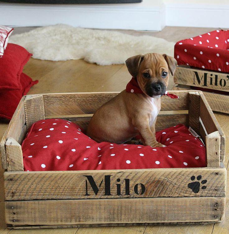 lit et panier pour chien. Black Bedroom Furniture Sets. Home Design Ideas
