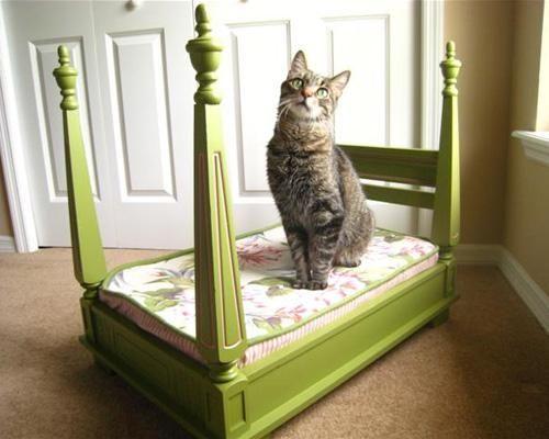 Table et lit pour chien