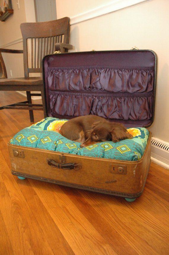 Lit pour chien dans une valise
