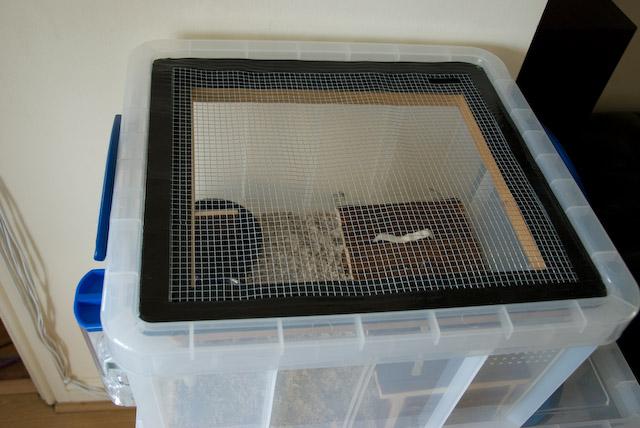 Aération pour une cage pour hamster