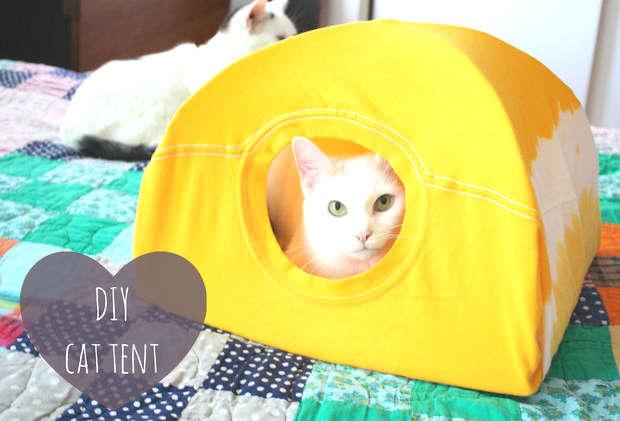 fabriquer une tente pour son chat