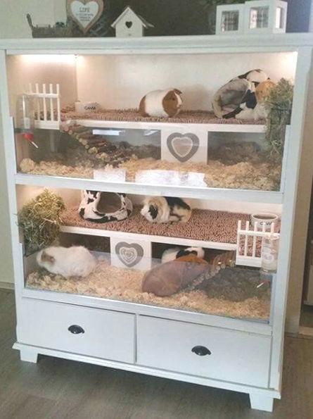 Fabriquer un meuble pour hamster