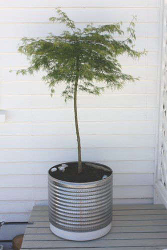 Fabriquer un pot pour plante avec une cuve de laveuse