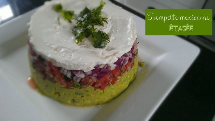 trempette mexicaine avocat et pico de gallo